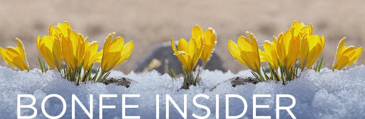 Bonfe Insider April 2019