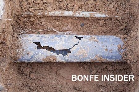 Bonfe Insider August 2020